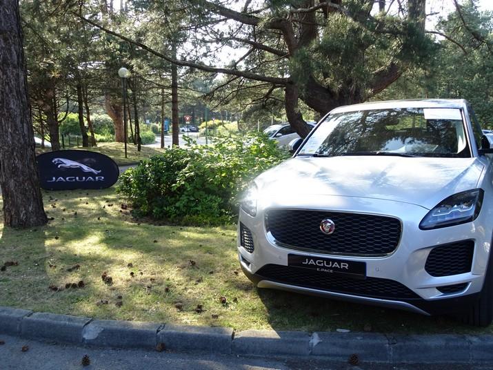Coupe Jaguar 14